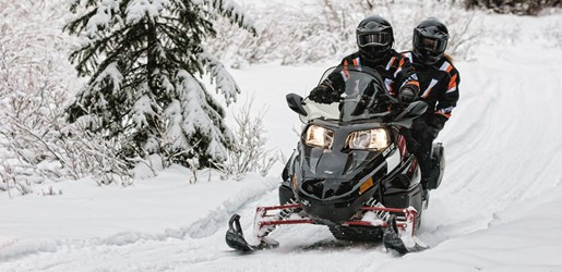 Arctic Cat TZ1 6