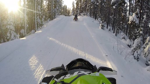 Riding The North Spruce Forest Trail