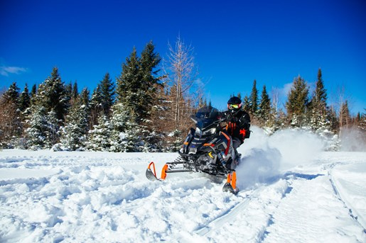 2017 Polaris Switchback Photo