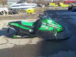 2007 Arctic Cat Jaguar - Z1
