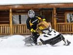 Ski-Doo Tundra™ LT 550F 2017
