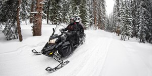2017 Ski-Doo GRAND TOURING LE Photo 3 of 5