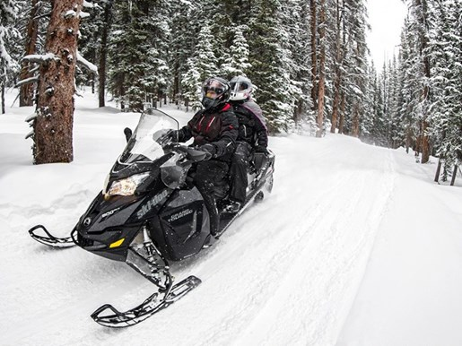 2018 Ski-Doo Grand Touring LE Ripsaw 1.25 STIS Rotax® 900 ACE R Photo 3 of 3