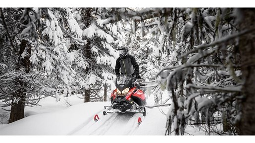 2019 Ski-Doo Renegade Enduro 900 ACE Turbo Photo 8 of 11