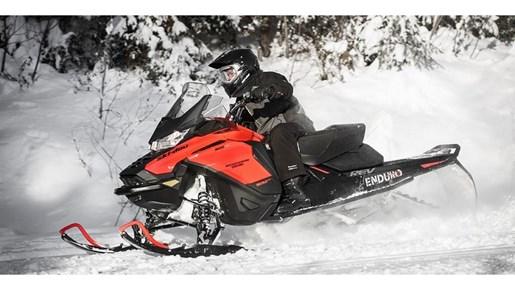 2019 Ski-Doo Renegade Enduro 900 ACE Turbo Photo 11 of 11