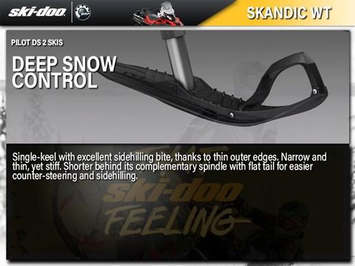 2019 Ski-Doo Skandic® WT Rotax® 550F Photo 5 of 5