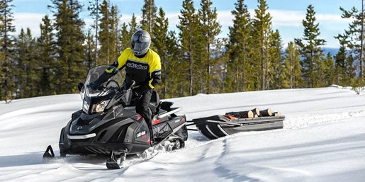 2019 Ski-Doo Skandic SWT 600 HO E-Tec Photo 1 of 3