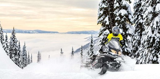 2019 Ski-Doo Skandic SWT 600 HO E-Tec Photo 2 of 3