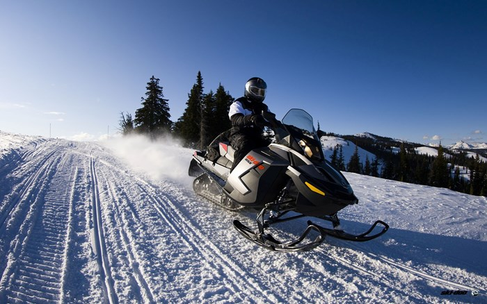 Ski Doo gsx le 800etec