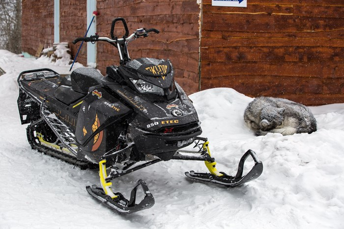 2017 Ski-Doo Summit X 850 with sleeping husky at horwood lake lodge