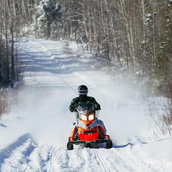 Ski-doo Renegade Backcountry 600 head on