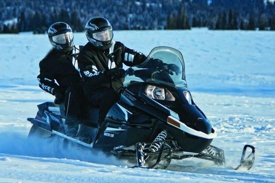 Touring Arctic Cat TZ1 snowmobile for sale