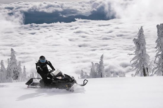 Utility Ski Doo Tundra Xtreme snowmobile for sale