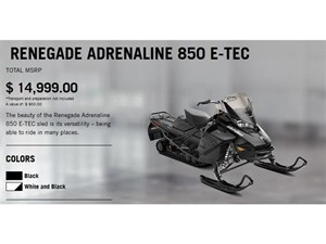 2018 Ski-Doo RENEGADE ADRENALINE 850 E-TEC Photo 2 of 15
