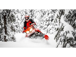 Ski-Doo Backcountry X-RS 850 E-TEC - SPRING ONLY 2019