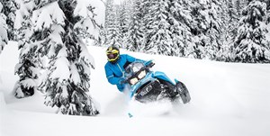 Ski-Doo Backcountry X 850 E-TEC - SPRING ONLY 2019
