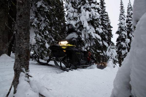 2020 Ski-Doo EXPEDITION LE 900 ACE TURBO Photo 3 of 5
