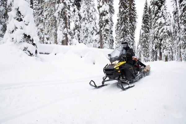 2020 Ski-Doo EXPEDITION LE 900 ACE TURBO Photo 4 of 5